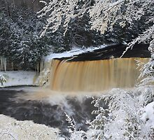 Tahquamenon Falls in the Winter by DArthurBrown