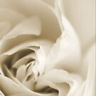 Sensual Pastel by Chet  King