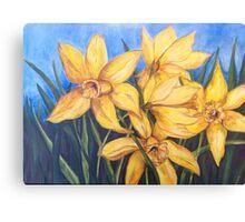 Dancing Daffodils  Canvas Print