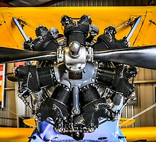 Radial Engine on a PT17 Stearman bi-plane by chris-csfotobiz