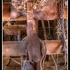 Rio Grande Saddle by KeithBanse