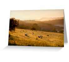 Golden Mist by Smart Imaging Greeting Card