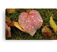 For the Love of Fall Canvas Print