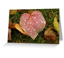 For the Love of Fall Greeting Card