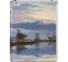 Winter Reflections iPad Case/Skin