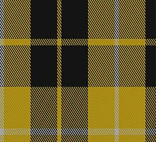 01633 Barclay Dress Clan/Family Tartan Fabric Print Iphone Case by Detnecs2013