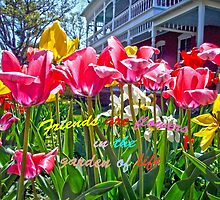 Tulip Friends by Susan S. Kline