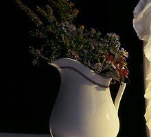 Pitcher flowers in window by Karl  Zielke