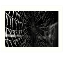 Web Drops  Art Print