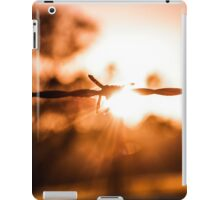 Autumn Wire iPad Case/Skin