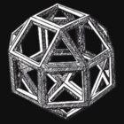 DaVinci's Polyhedra by rude8oi