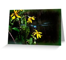 Dragonfly Blend Greeting Card