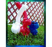Playful Balloon Monkeys Photographic Print