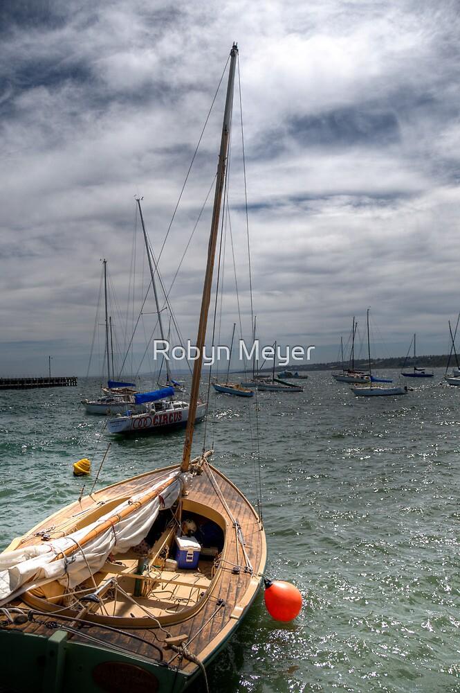 A Windy Day by Robyn Meyer
