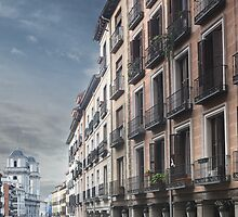 Calle Toledo, Madrid by Mark Higgins