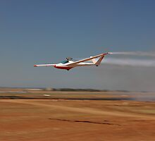 Jet-powered Glider, Avalon Airshow, Australia 2013 by muz2142