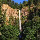 Multnomah Falls, Oregon by DArthurBrown