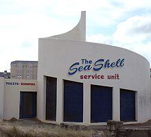 A Seashell on the Irish Coast by Andrew Nelson
