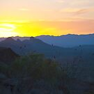 Big Bend Sunset by Cathy Jones