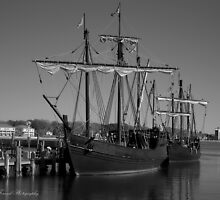Nina and Pinta in Black and White by dforand