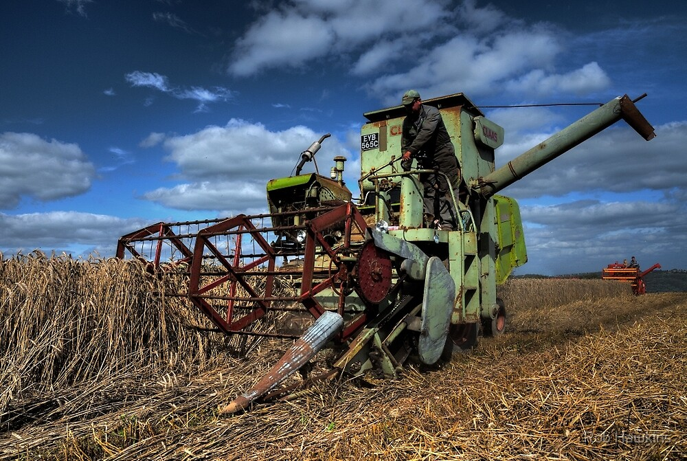 A touch of Claas by Rob Hawkins