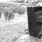 Piano Graveyard - Black on the Hill by Erika Lieftink