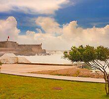 Forte de S.Julião. algae tide. by terezadelpilar~ art & architecture