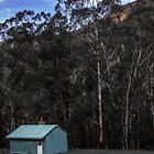 The Little Blue House, Newnes by Mandy  Harvey