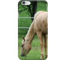 horses iPhone Case/Skin
