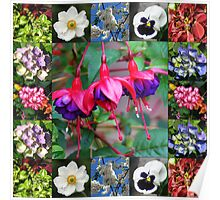 Vibrant Flowers Collage Poster