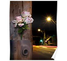 Roadside memorials #19 Poster