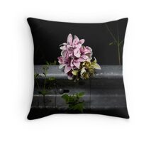 Roadside memorials #20 Throw Pillow