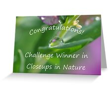 Closeups in Nature Challenge Winner Banner Greeting Card