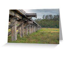 Old Snowy River Bridge. Greeting Card
