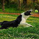 My Ball! by Lover1969