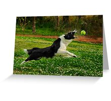 My Ball! Greeting Card