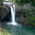 Snoqualmie Falls by Sarah Slapper