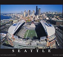 Seattle Seahawks by Sarah Slapper