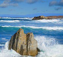 Asilomar Rollers - Asilomar State Beach by JimPavelle