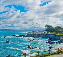 Morning Walk - Pacific Grove, CA by JimPavelle