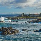 Hopkins Marine Station Surf - Pacific Grove, CA by JimPavelle