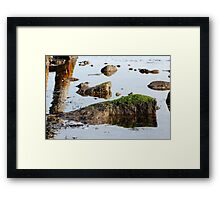 Rock in the water Framed Print