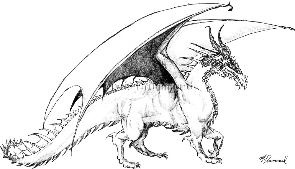 Dragon by Maria Drummond