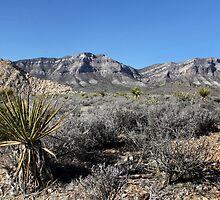 Blue Diamond Mountains, Nevada by Susan Drysdale