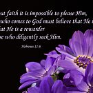 Hebrews 11:6 by Deborah McLain