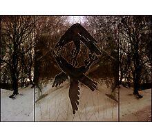 Triptich Odin Rune Photographic Print