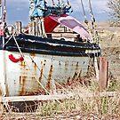 Ship Wreck by SophieGorner7