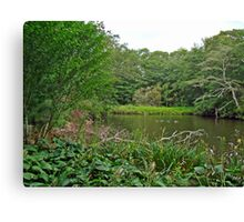 Oyster Pond From Spohr Gardens - Falmouth MA Canvas Print