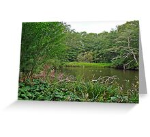 Oyster Pond From Spohr Gardens - Falmouth MA Greeting Card