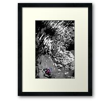 red coral in black and white water Framed Print